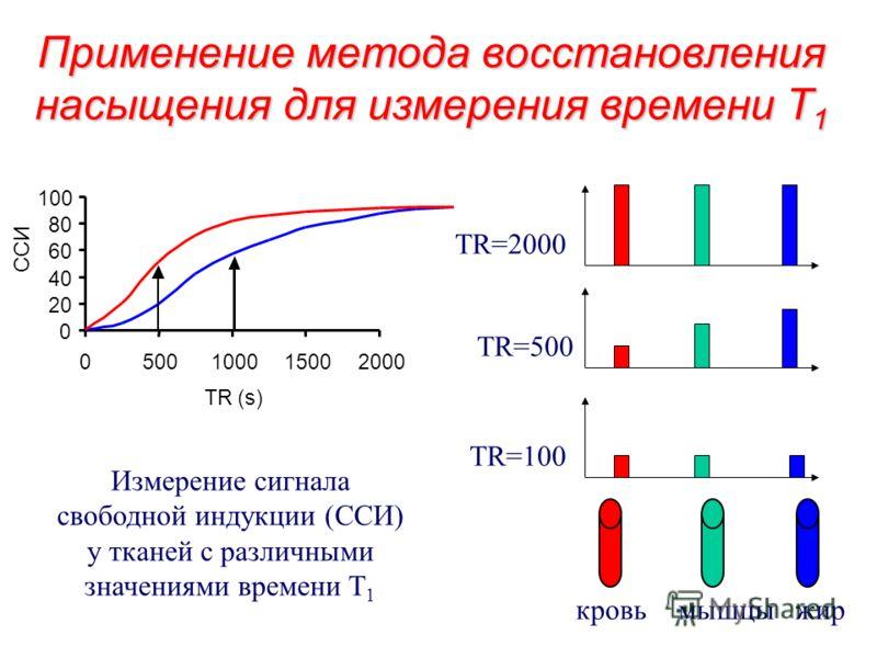 Метод восстановления насыщения 90 o ЭМ импульс T 1 -релаксация Время повтора (TR) Вектор намагниченности M 0 может быть отклонен на 90 o с помощью ЭМ импульса. За время повтора (TR) система релаксирует и вектор M 0 возвращается в равновесное состояни