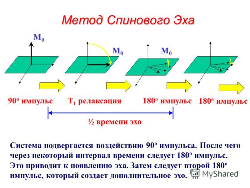 Изображения, полученные методом восстановления инвертированного сигнала TR = 1000 ms TI = 50 ms TR = 1000 ms TI = 250 ms TR = 1000 ms TI = 750 ms