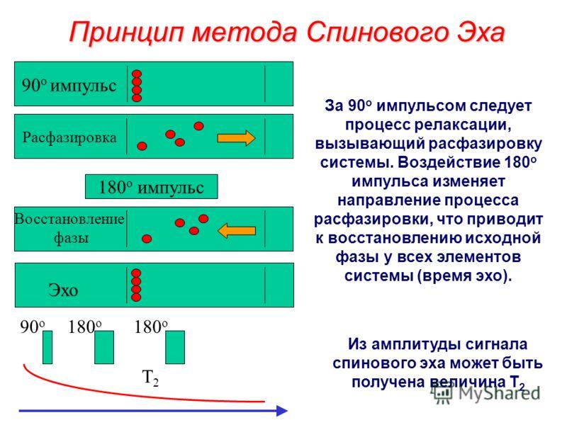 Метод Спинового Эха M0M0M0M0 x y M0M0M0M0 M0M0M0M0 180 o импульсT 1 релаксация90 o импульс ½ времени эхо 180 o импульс Система подвергается воздействию 90 o импульса. После чего через некоторый интервал времени следует 180 o импульс. Это приводит к п