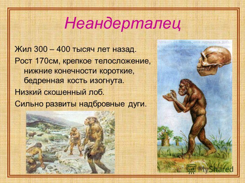 Неандерталец Жил 300 – 400 тысяч лет назад. Рост 170см, крепкое телосложение, нижние конечности короткие, бедренная кость изогнута. Низкий скошенный лоб. Сильно развиты надбровные дуги.