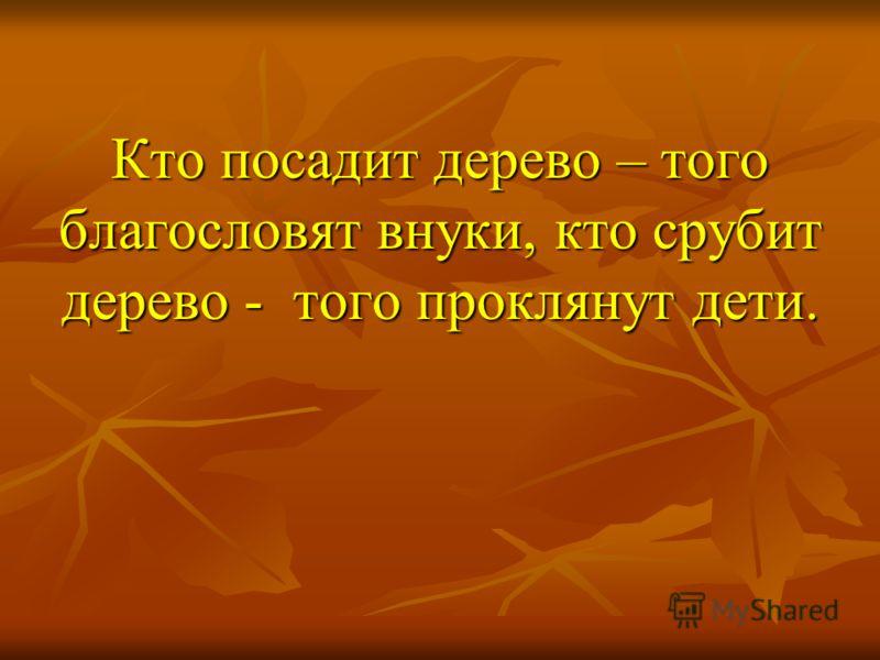 Кто посадит дерево – того благословят внуки, кто срубит дерево - того проклянут дети.