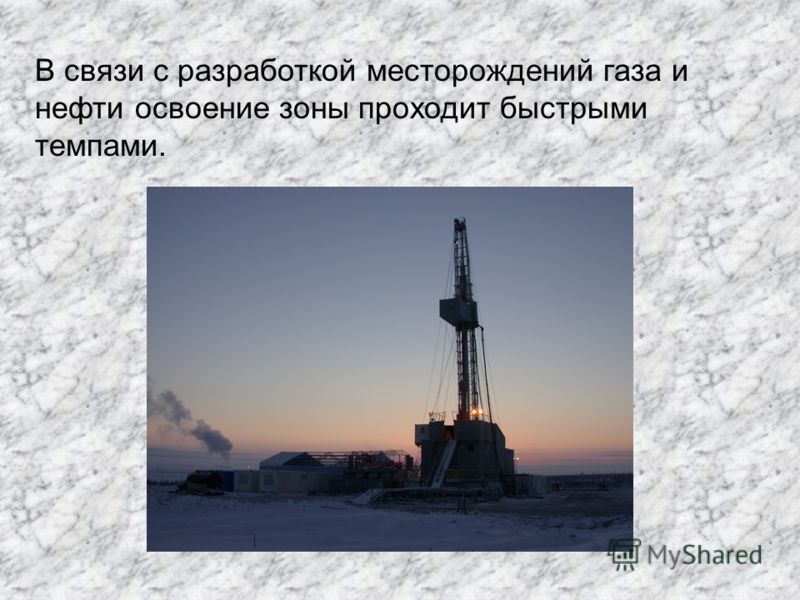 В связи с разработкой месторождений газа и нефти освоение зоны проходит быстрыми темпами.