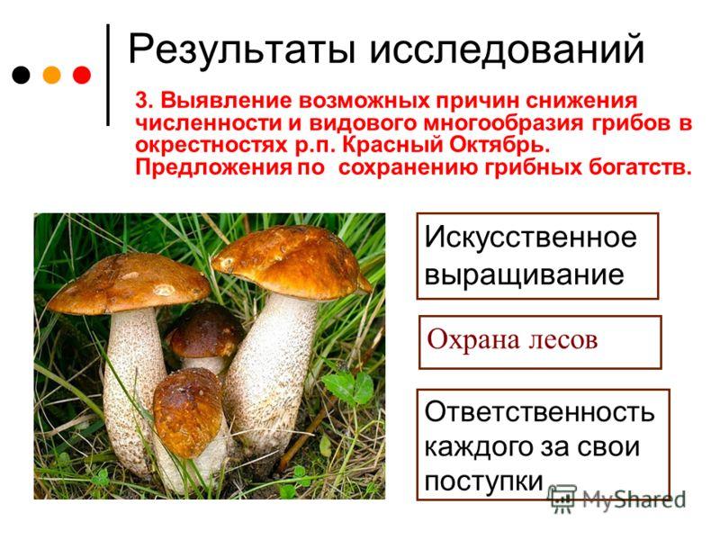 Результаты исследований 3. Выявление возможных причин снижения численности и видового многообразия грибов в окрестностях р.п. Красный Октябрь. Предложения по сохранению грибных богатств. Искусственное выращивание Охрана лесов Ответственность каждого