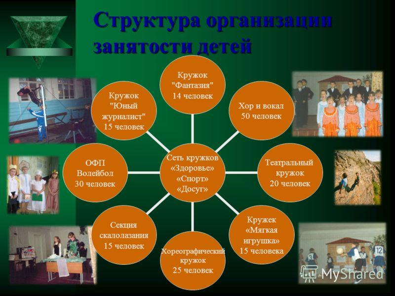 Структура организации занятости детей Сеть кружков «Здоровье» «Спорт» «Досуг» Кружок
