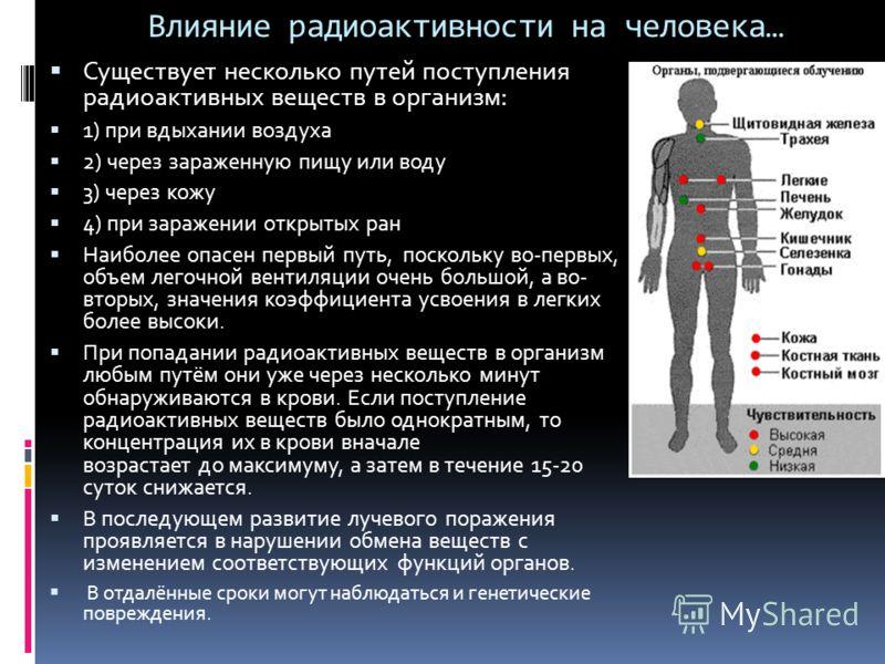 Влияние радиоактивности на человека… Существует несколько путей поступления радиоактивных веществ в организм: 1) при вдыхании воздуха 2) через зараженную пищу или воду 3) через кожу 4) при заражении открытых ран Наиболее опасен первый путь, поскольку