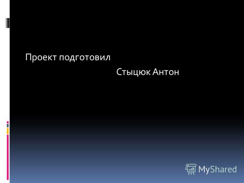 Проект подготовил Стыцюк Антон