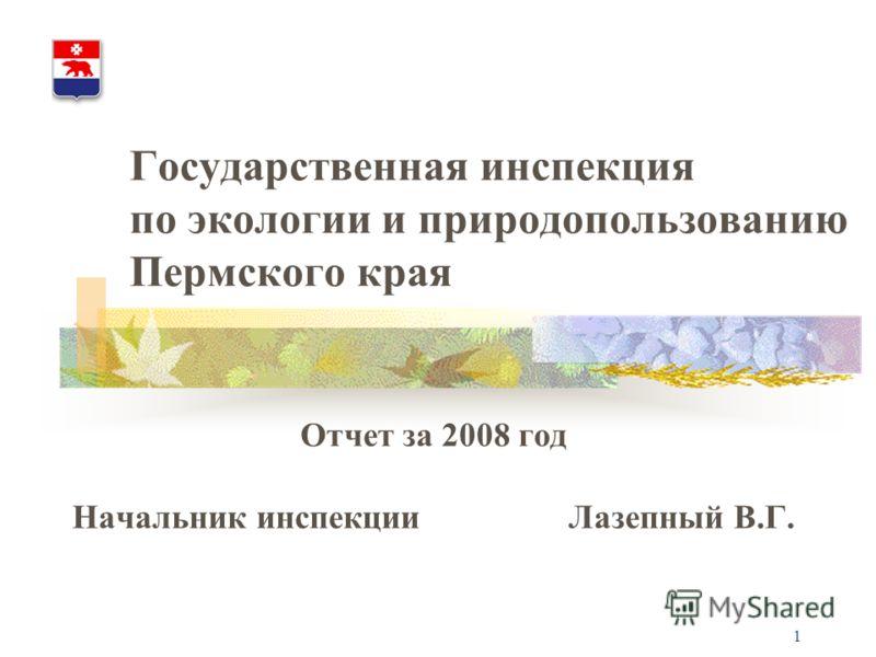 1 Государственная инспекция по экологии и природопользованию Пермского края Отчет за 2008 год Начальник инспекции Лазепный В.Г.