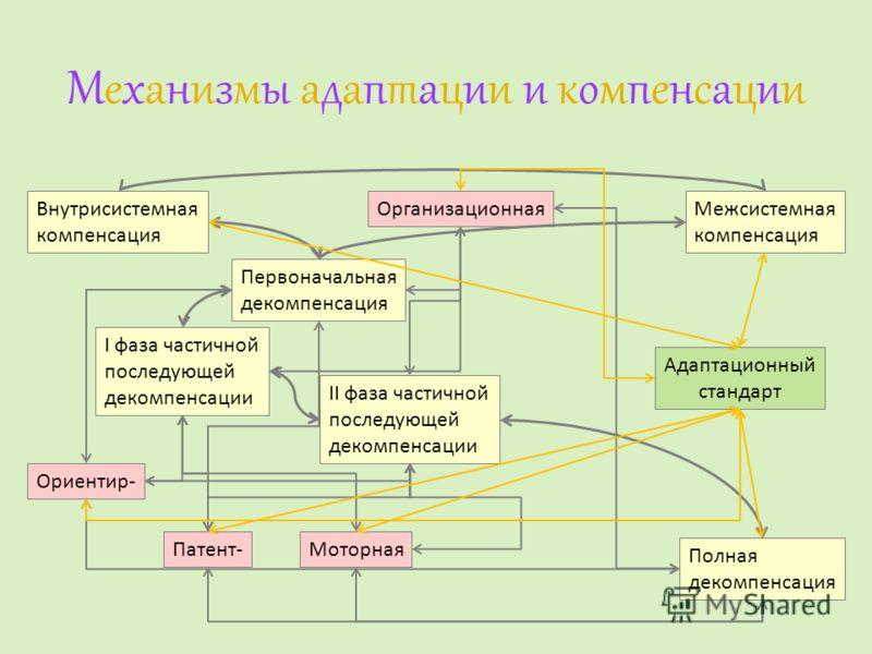 Механизмы адаптации и компенсацииМеханизмы адаптации и компенсации Первоначальная декомпенсация I фаза частичной последующей декомпенсации II фаза частичной последующей декомпенсации Полная декомпенсация Внутрисистемная компенсация Межсистемная компе