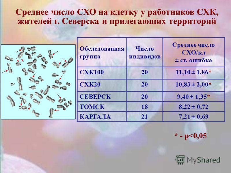 Среднее число СХО на клетку у работников СХК, жителей г. Северска и прилегающих территорий * - р