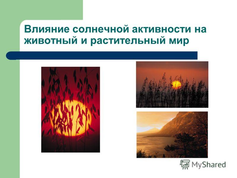 Влияние солнечной активности на животный и растительный мир