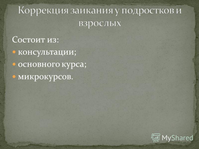 Состоит из: консультации; основного курса; микрокурсов.