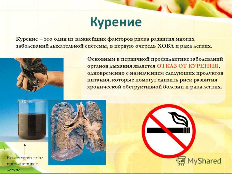 Курение Курение – это один из важнейших факторов риска развития многих заболеваний дыхательной системы, в первую очередь ХОБЛ и рака легких. Основным в первичной профилактике заболеваний органов дыхания является ОТКАЗ ОТ КУРЕНИЯ, одновременно с назна