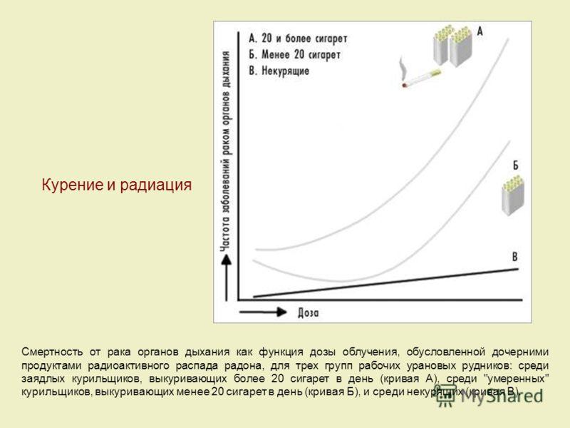 Курение и радиация Смертность от рака органов дыхания как функция дозы облучения, обусловленной дочерними продуктами радиоактивного распада радона, для трех групп рабочих урановых рудников: среди заядлых курильщиков, выкуривающих более 20 сигарет в д