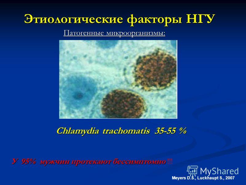 Этиологические факторы НГУ Meyers D.S., Luckhaupt S., 2007 Chlamydia trachomatis 35-55 % Патогенные микроорганизмы: У 95% мужчин протекают бессимптомно У 95% мужчин протекают бессимптомно !!!