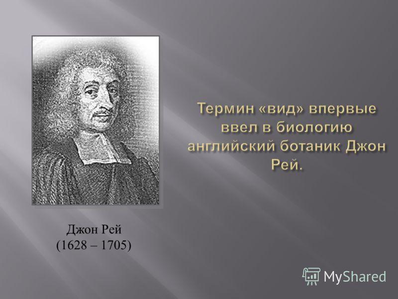 Джон Рей (1628 – 1705)