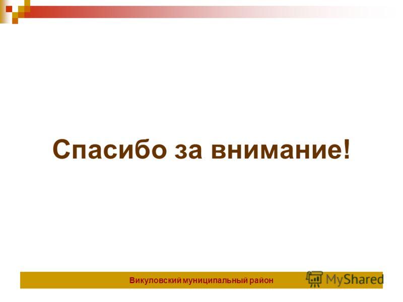 Спасибо за внимание! Викуловский муниципальный район