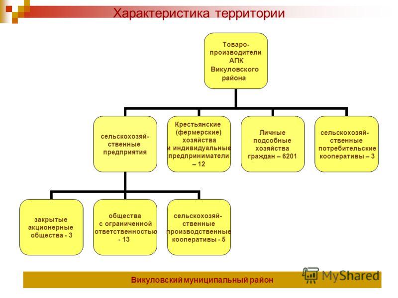 Товаро- производители АПК Викуловского района сельскохозяй- ственные предприятия закрытые акционерные общества - 3 общества с ограниченной ответственностью - 13 сельскохозяй- ственные производственные кооперативы - 5 Крестьянские (фермерские) хозяйст