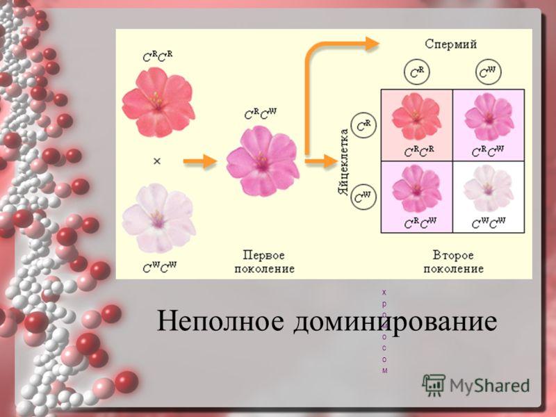 Сцепление на языке хромосомСцепление на языке хромосом Неполное доминирование
