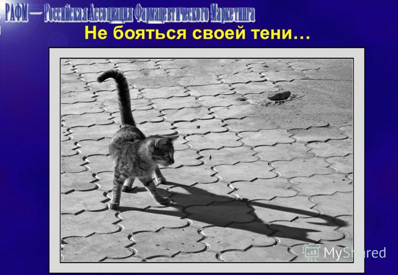 Не бояться своей тени…
