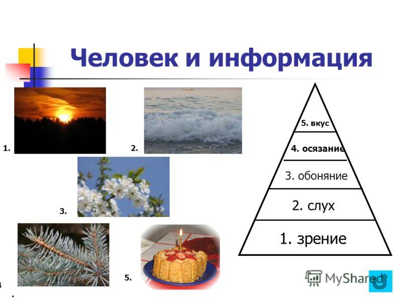 Человек и информация 2. слух 4. осязание 1.2. 3. 4..4.. 5. 1. зрение 3. обоняние 5. вкус