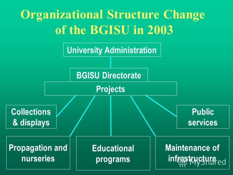 Collections & displays BGISU Directorate Organizational Structure Change of the BGISU in 2003 Projects Educational programs Public services Propagation and nurseries Maintenance of infrastructure University Administration