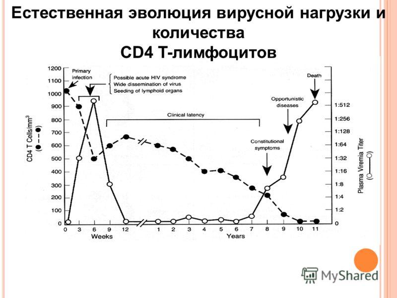 Естественная эволюция вирусной нагрузки и количества CD4 T-лимфоцитов