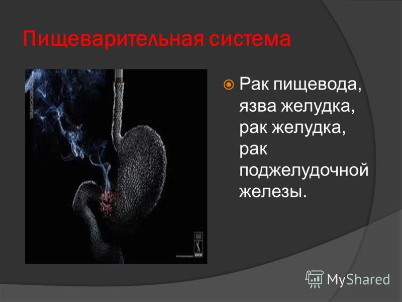 Пищеварительная система Рак пищевода, язва желудка, рак желудка, рак поджелудочной железы.