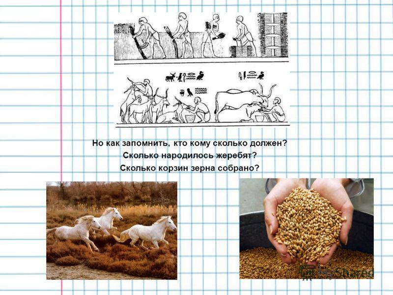 Но как запомнить, кто кому сколько должен? Сколько народилось жеребят? Сколько корзин зерна собрано?