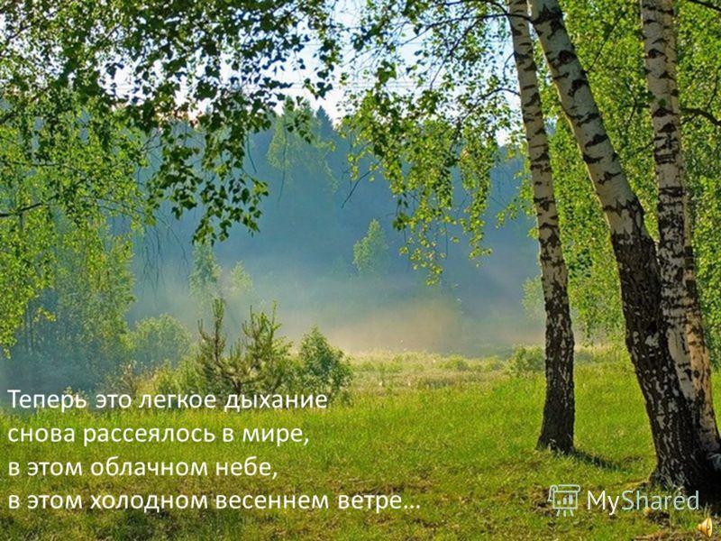 Теперь это легкое дыхание снова рассеялось в мире, в этом облачном небе, в этом холодном весеннем ветре…