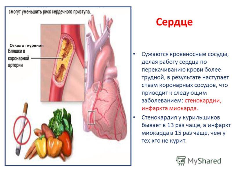 Сердце Сужаются кровеносные сосуды, делая работу сердца по перекачиванию крови более трудной, в результате наступает спазм коронарных сосудов, что приводит к следующим заболеванием: стенокардии, инфаркта миокарда. Стенокардия у курильщиков бывает в 1