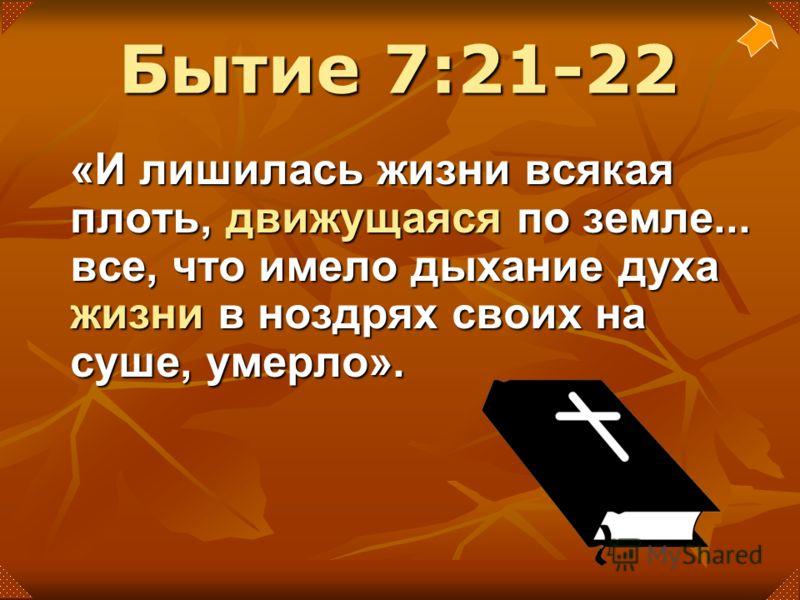 «И лишилась жизни всякая плоть, движущаяся по земле... все, что имело дыхание духа жизни в ноздрях своих на суше, умерло». Бытие 7:21-22