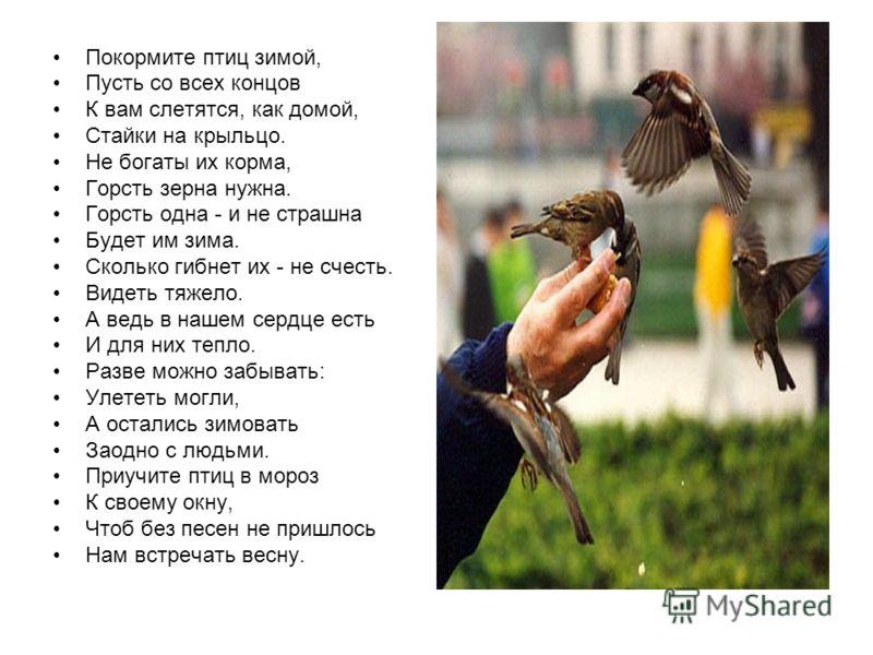 Покормите птиц зимой, Пусть со всех концов К вам слетятся, как домой, Стайки на крыльцо. Не богаты их корма, Горсть зерна нужна. Горсть одна - и не страшна Будет им зима. Сколько гибнет их - не счесть. Видеть тяжело. А ведь в нашем сердце есть И для