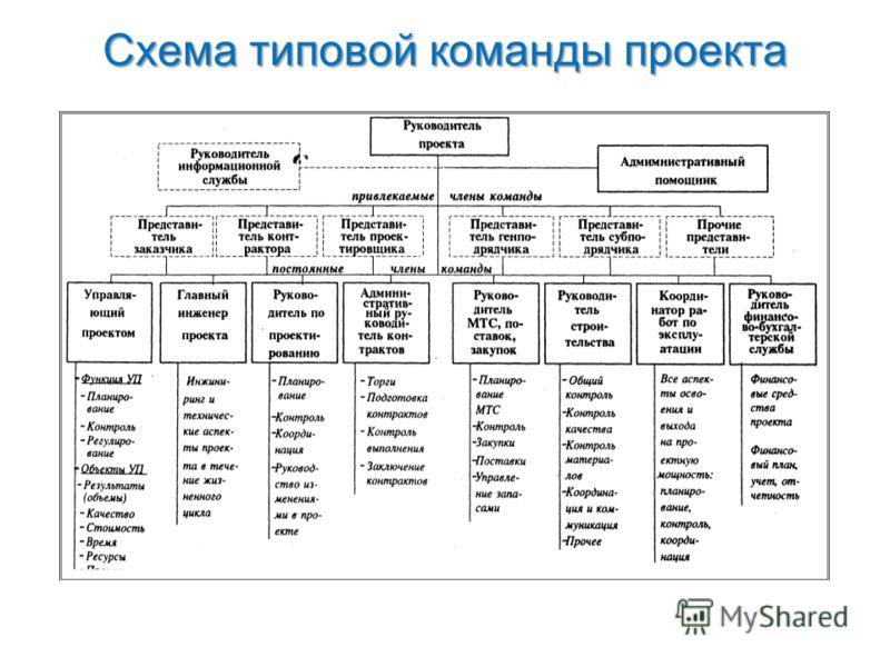 Схема типовой команды проекта