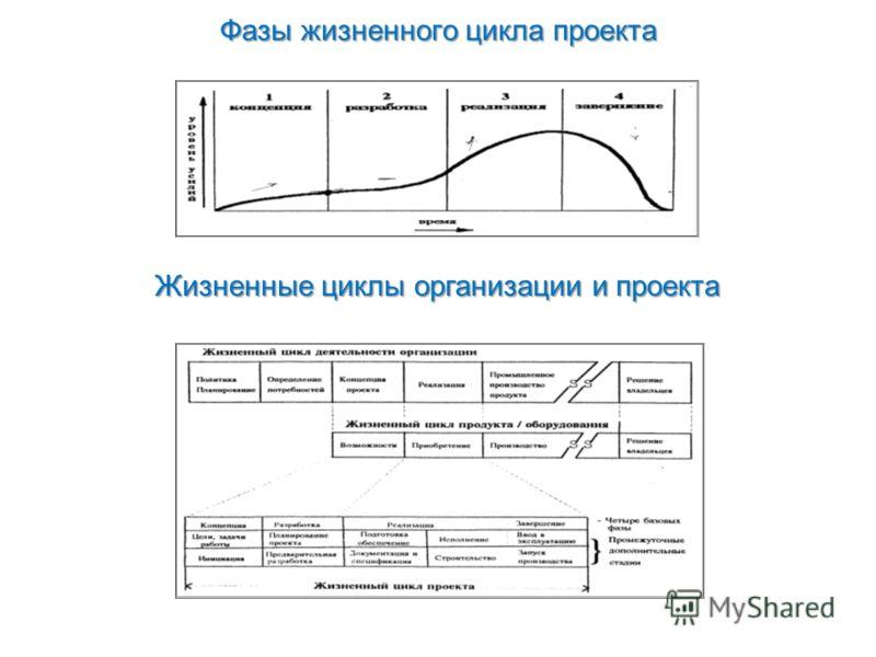 Фазы жизненного цикла проекта Жизненные циклы организации и проекта