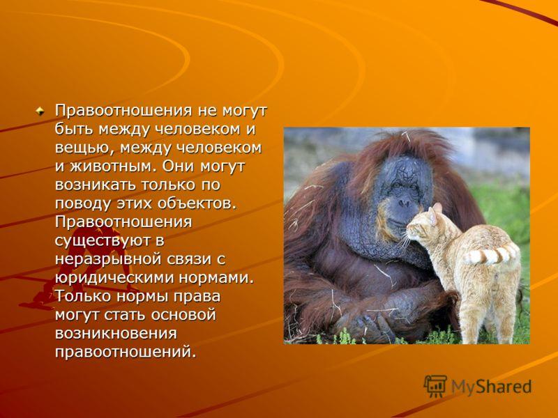 Правоотношения не могут быть между человеком и вещью, между человеком и животным. Они могут возникать только по поводу этих объектов. Правоотношения существуют в неразрывной связи с юридическими нормами. Только нормы права могут стать основой возникн