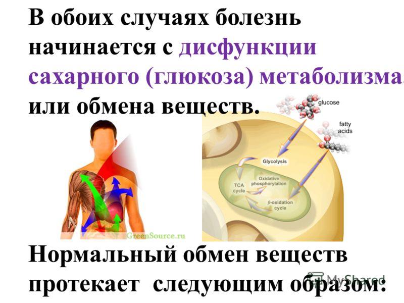 В обоих случаях болезнь начинается с дисфункции сахарного (глюкоза) метаболизма, или обмена веществ. Нормальный обмен веществ протекает следующим образом: