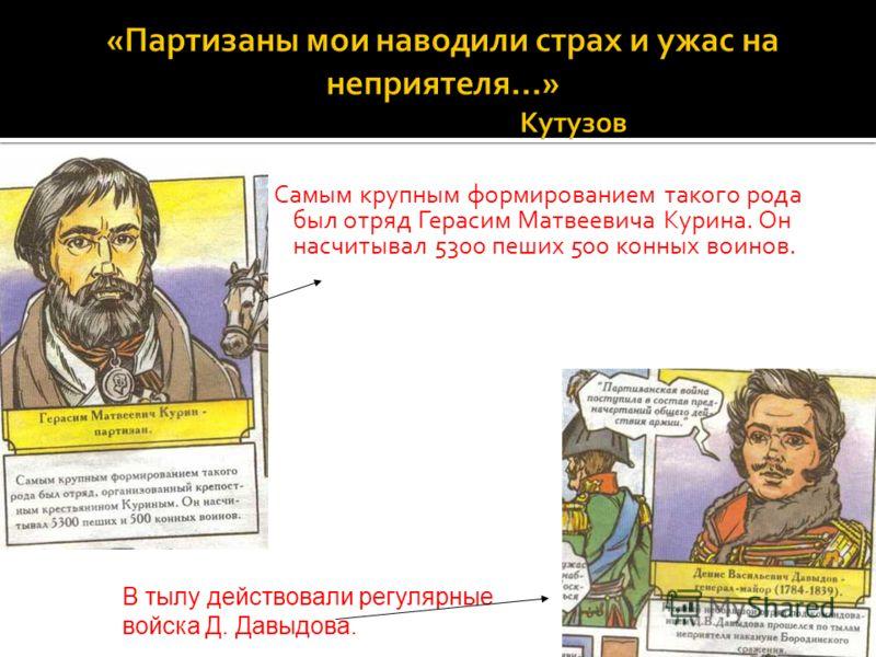 Самым крупным формированием такого рода был отряд Герасим Матвеевича Курина. Он насчитывал 5300 пеших 500 конных воинов.. В тылу действовали регулярные войска Д. Давыдова.