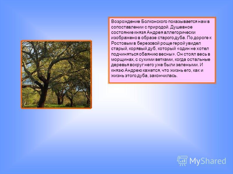 Возрождение Болконского показывается нам в сопоставлении с природой. Душевное состояние князя Андрея аллегорически изображено в образе старого дуба. По дороге к Ростовым в березовой роще герой увидел старый, корявый дуб, который «один не хотел подчин