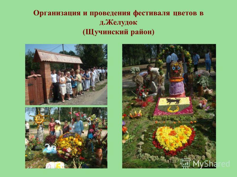 Организация и проведения фестиваля цветов в д.Желудок (Щучинский район)