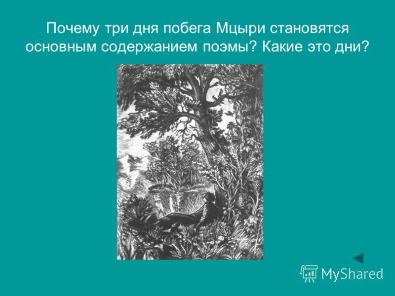 Почему три дня побега Мцыри становятся основным содержанием поэмы? Какие это дни?