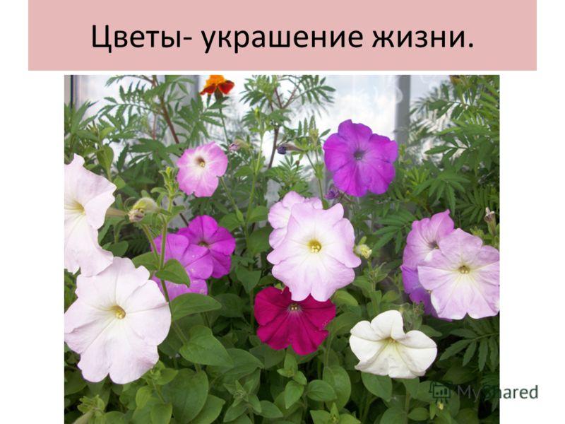 Цветы- украшение жизни.
