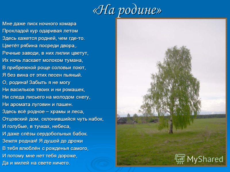 Поэт А.Рыжов был по-сыновнему предан родному краю. Поклонюсь в лесу берёзкам русским, Поклонюсь в лесу берёзкам русским, Поклонюсь в полях высокой ржи. Поклонюсь в полях высокой ржи. Без тебя родной мой край санчурский, Без тебя родной мой край санчу