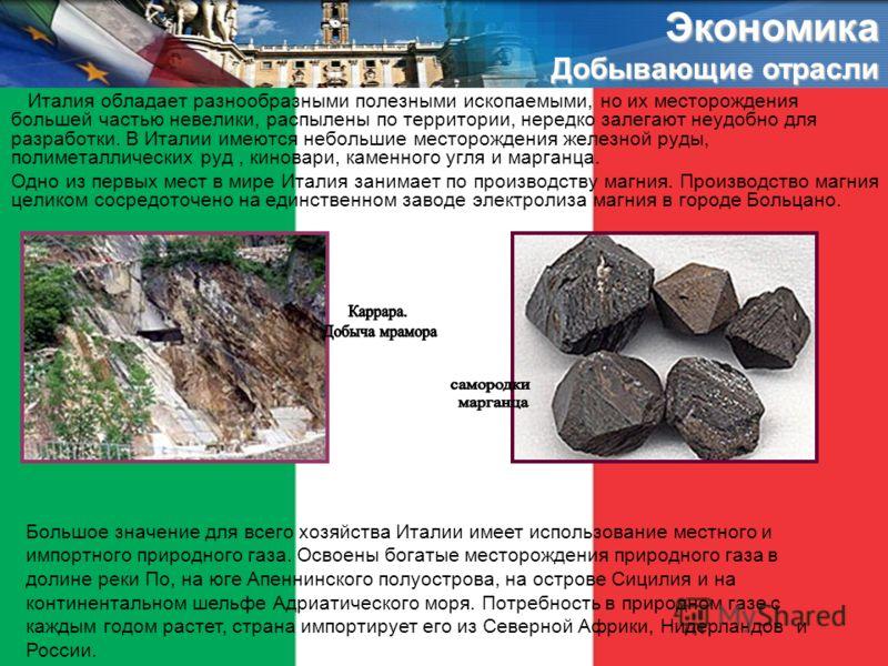 Италия обладает разнообразными полезными ископаемыми, но их месторождения большей частью невелики, распылены по территории, нередко залегают неудобно для разработки. В Италии имеются небольшие месторождения железной руды, полиметаллических руд, кинов