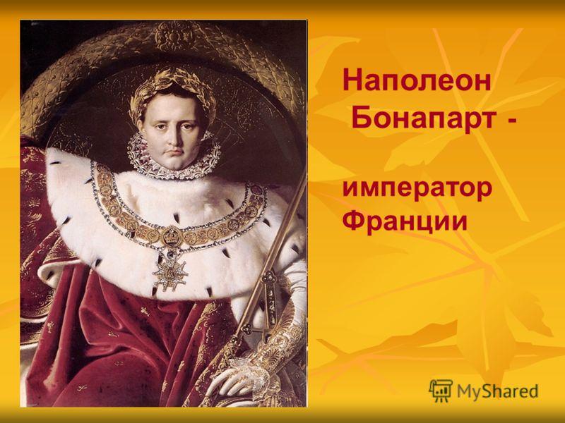 Наполеон Бонапарт - император Франции