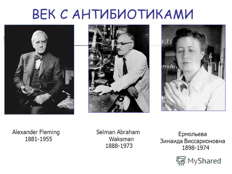 ВЕК С АНТИБИОТИКАМИ Ермольева Зинаида Виссарионовна 1898-1974 Alexander Fleming 1881-1955 Selman Abraham Waksman 1888-1973