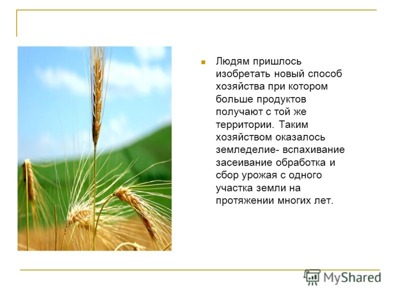 Людям пришлось изобретать новый способ хозяйства при котором больше продуктов получают с той же территории. Таким хозяйством оказалось земледелие- вспахивание засеивание обработка и сбор урожая с одного участка земли на протяжении многих лет.