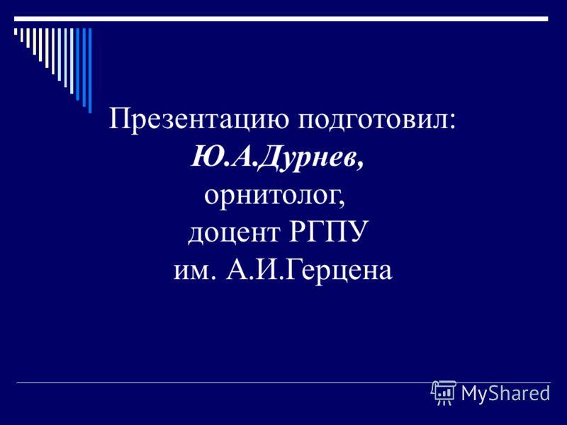 Презентацию подготовил: Ю.А.Дурнев, орнитолог, доцент РГПУ им. А.И.Герцена