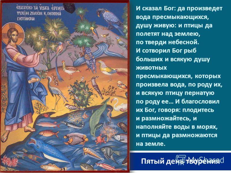 И сказал Бог : да произведет вода пресмыкающихся, душу живую : и птицы да полетят над землею, по тверди небесной. И сотворил Бог рыб больших и всякую душу животных пресмыкающихся, которых произвела вода, по роду их, и всякую птицу пернатую по роду ее