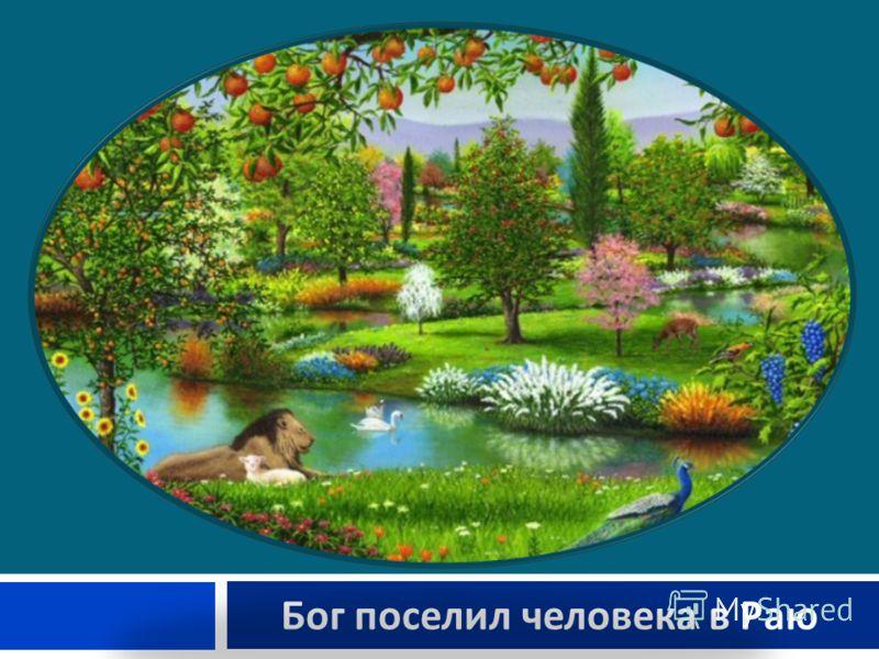 Бог поселил человека в Раю