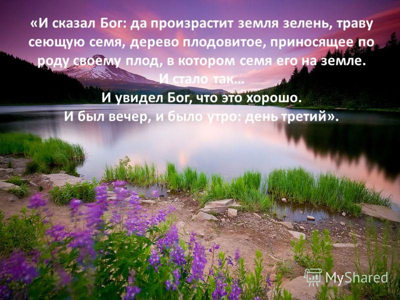 « И сказал Бог : да произрастит земля зелень, траву сеющую семя, дерево плодовитое, приносящее по роду своему плод, в котором семя его на земле. И стало так … И увидел Бог, что это хорошо. И был вечер, и было утро : день третий ».